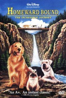 Homeward Bound: The Incredible Journey- family adventure of lost pets on an extraordinary journey home.