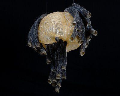 Nests / Brain  - Fiona Hall