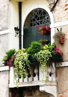 European Balcony with wonderful trailing container garden