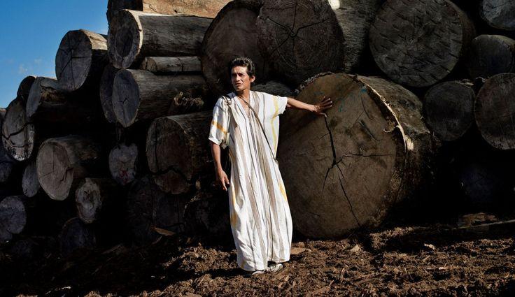 Edwin Chota eligió el bosque y lo asesinaron. Activismo medioambiental en la Amazonía del Perú #MedioAmbiente   #Amazonas   #Activismo   #Deforestación   #Perú