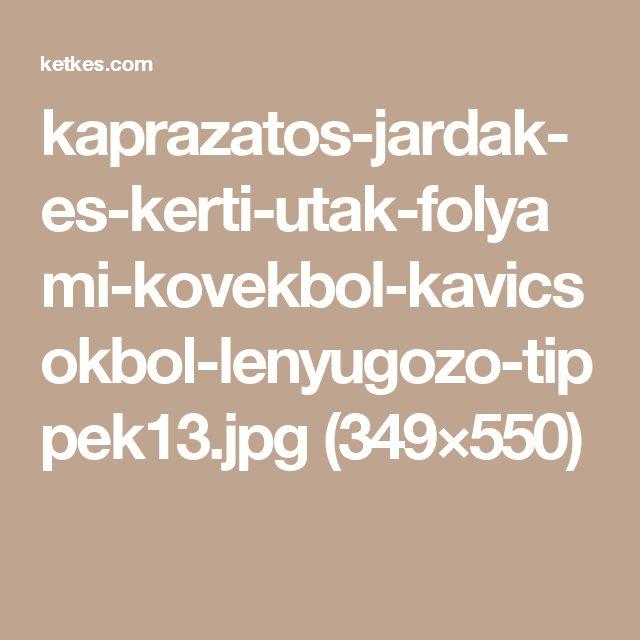 kaprazatos-jardak-es-kerti-utak-folyami-kovekbol-kavicsokbol-lenyugozo-tippek13.jpg (349×550)
