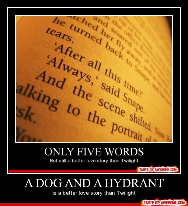 """A Dog And A Hydrant"" ... this is the best one yet"