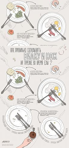 Как складывать вилку и нож на тарелке во время и после еды? Инфографика | Инфографика | Аргументы и Факты