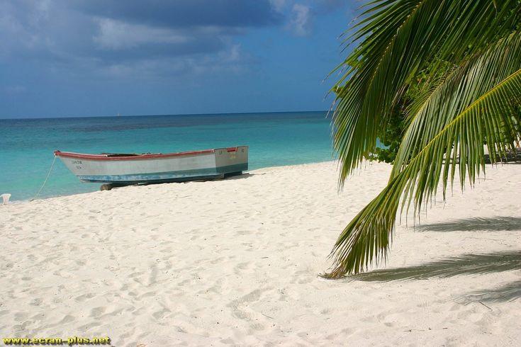 La plage du docteur - Ile de Saona - Republique  Dominicaine