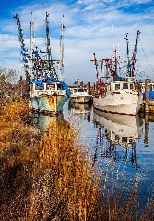 Lowcountry living ... shrimp boats on the creek.