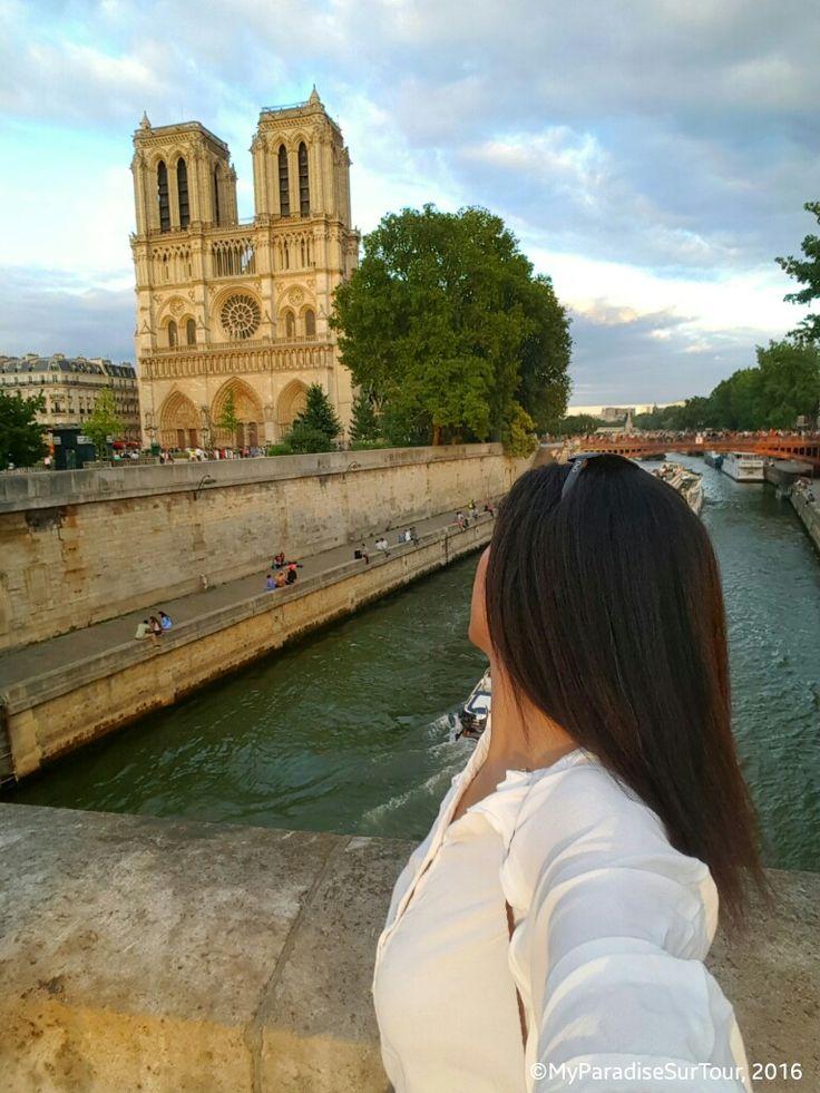 "Looking at the ""Dame de Paris""."