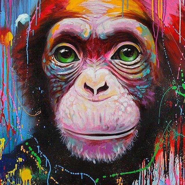 Street Art (Best of...) : Photo