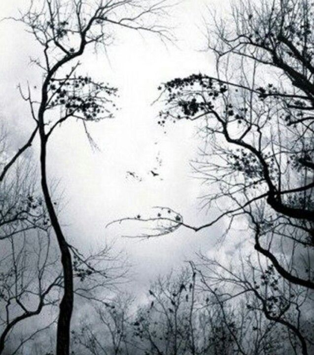 Beautiful Abstract Face In Trees Tattoo Sketches