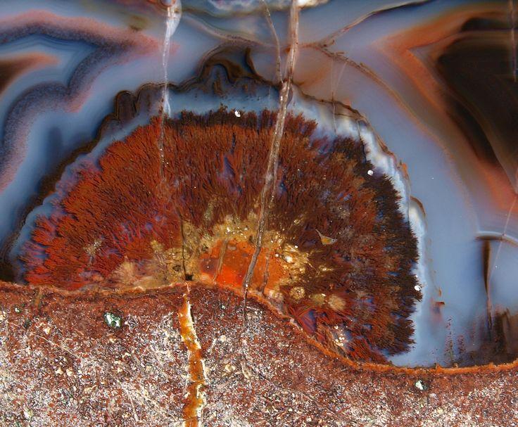 https://flic.kr/p/Fkgnsd   Goethite inclusions Doubravice quarry Czech Republic   OLYMPUS DIGITAL CAMERA