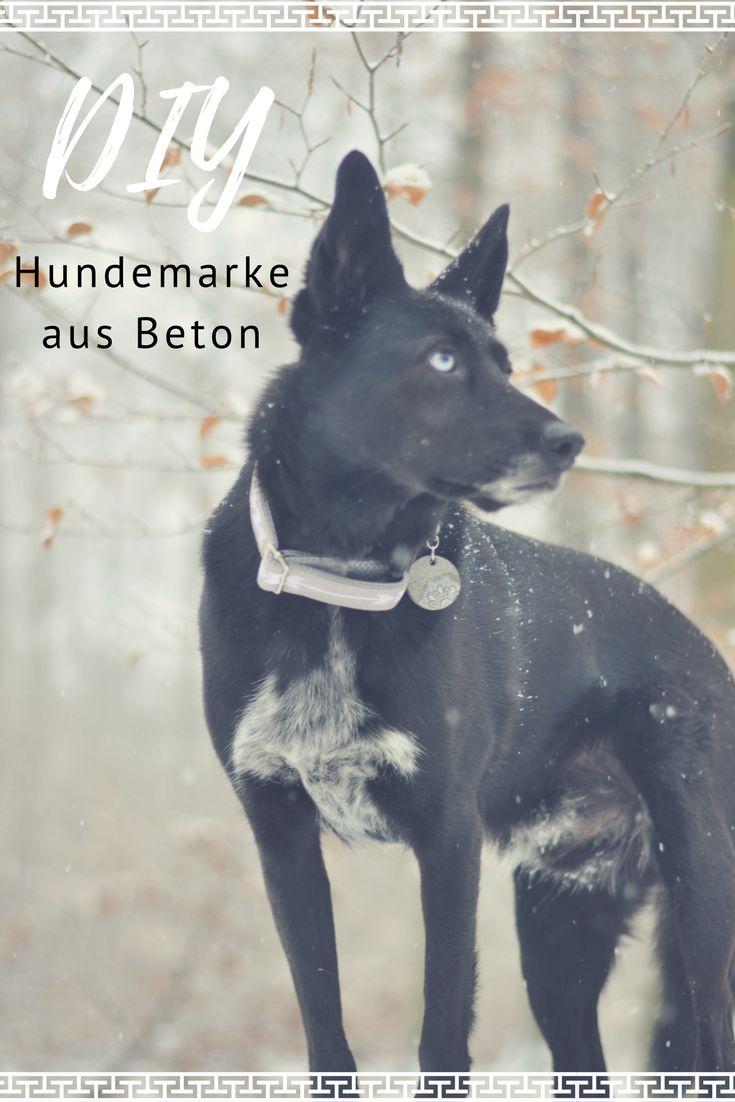 Kostenlose DIY Anleitung für eine selbstgemachte Hundemarke aus Schmuckbeton