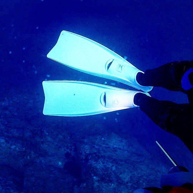 記念ダイビングって事で新しいフィン😄 ・ ・ ・ #Snorkelling  #sunset  #smile  #happiness  #coral  #diving  #scuba  #scubadiving  #naui  #mares  #adventure  #sea  #ocean  #lovethesea  #underwater  #travel  #trip  #Instagram  #tg4  #DIVERMAG #多良間島  #沖縄  #ダイビング  #スキューバダイビング  #砂丘  #珊瑚  #海  #海が好き  #笑顔