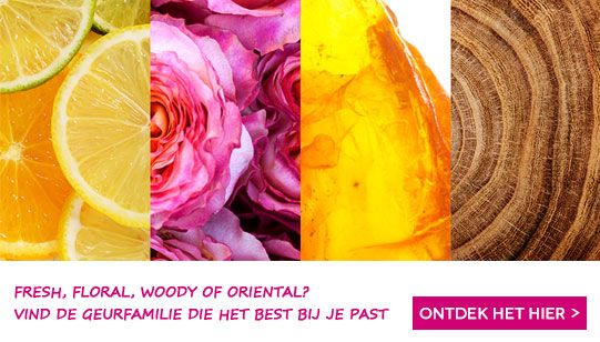 Online parfum bestellen in de webshop van ICI PARIS XL - Webshop ICI PARIS XL