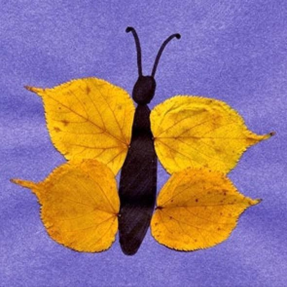 Fall butterfly leaf