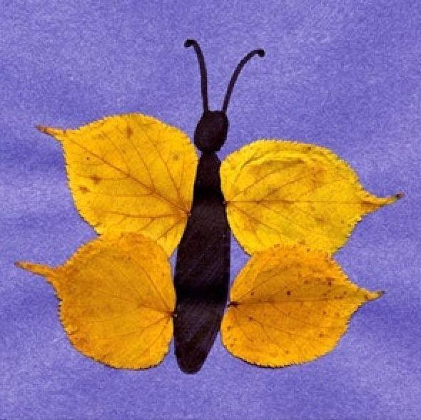 Fall butterfly leaf