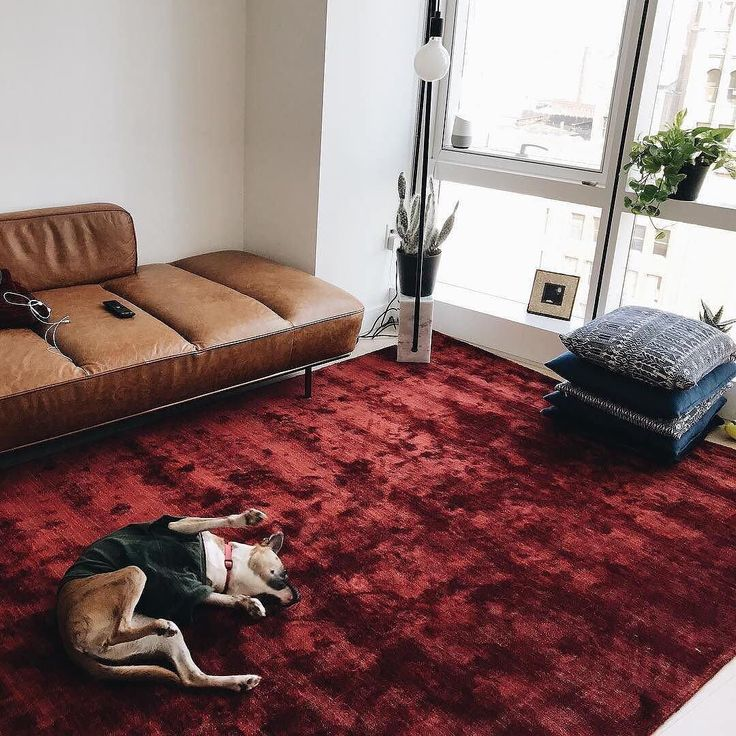 red rugs for living room. all the new stuff arrives  shop Posh Red Rug Lawndale Leather Daybed and Marble Floor Lamp with link in bio Best 25 rugs ideas on Pinterest persian rug living room