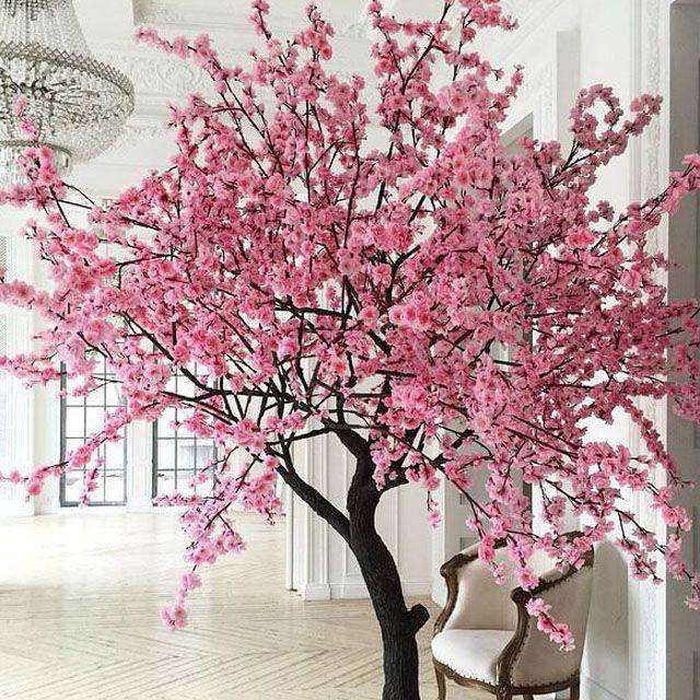 Сакура аренда, деревья аренда, эксклюзивное оформление, декор на праздник, оформление магазина