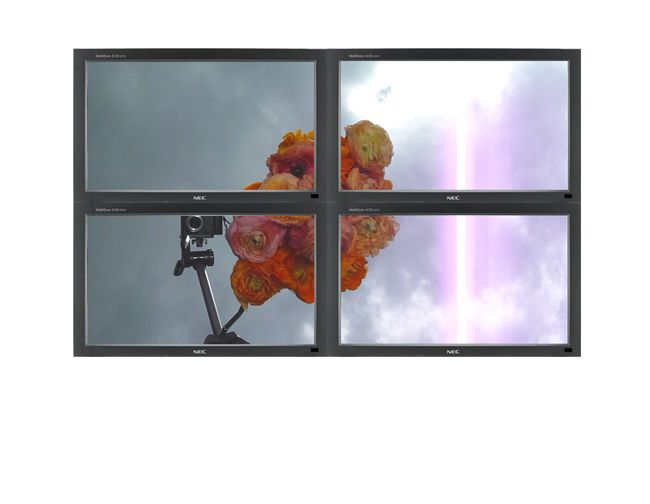 Untitled (Sylvester and Tweeter), 2011 4 monitors, 1 DVD player, 1 DVD Dimensions variable