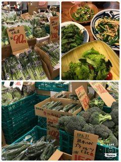 木の葉モール内の八百屋さん安くて新鮮で沢山の野菜を買っちゃいました なので野菜中心の夕飯に 小松菜のごまよごし パクチーとマッシュルームあえ 色々野菜とワカメのサラダ 筍とニラの炒め物 などなど 美味しい野菜を沢山食べれて幸せです tags[福岡県]