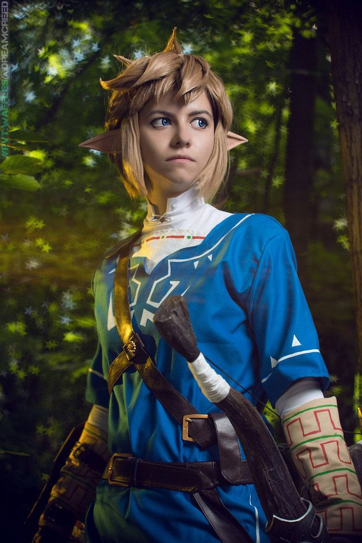 Breath of the wild zelda cosplay