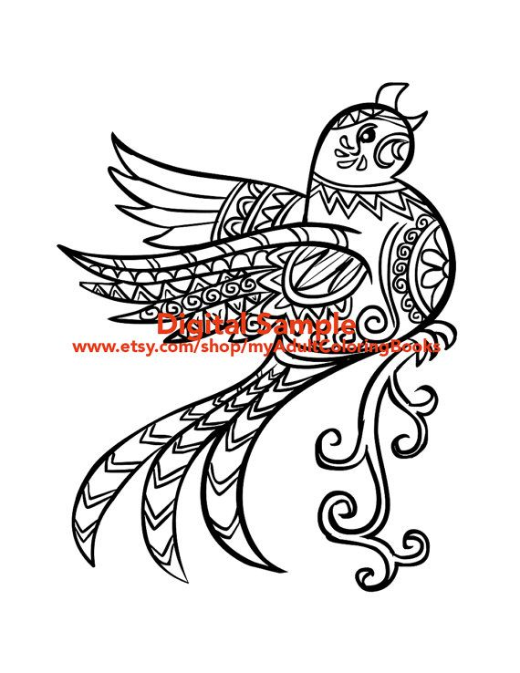 this listing is for one printable 85 x 11 coloring page in black and white - Bird Coloring Book