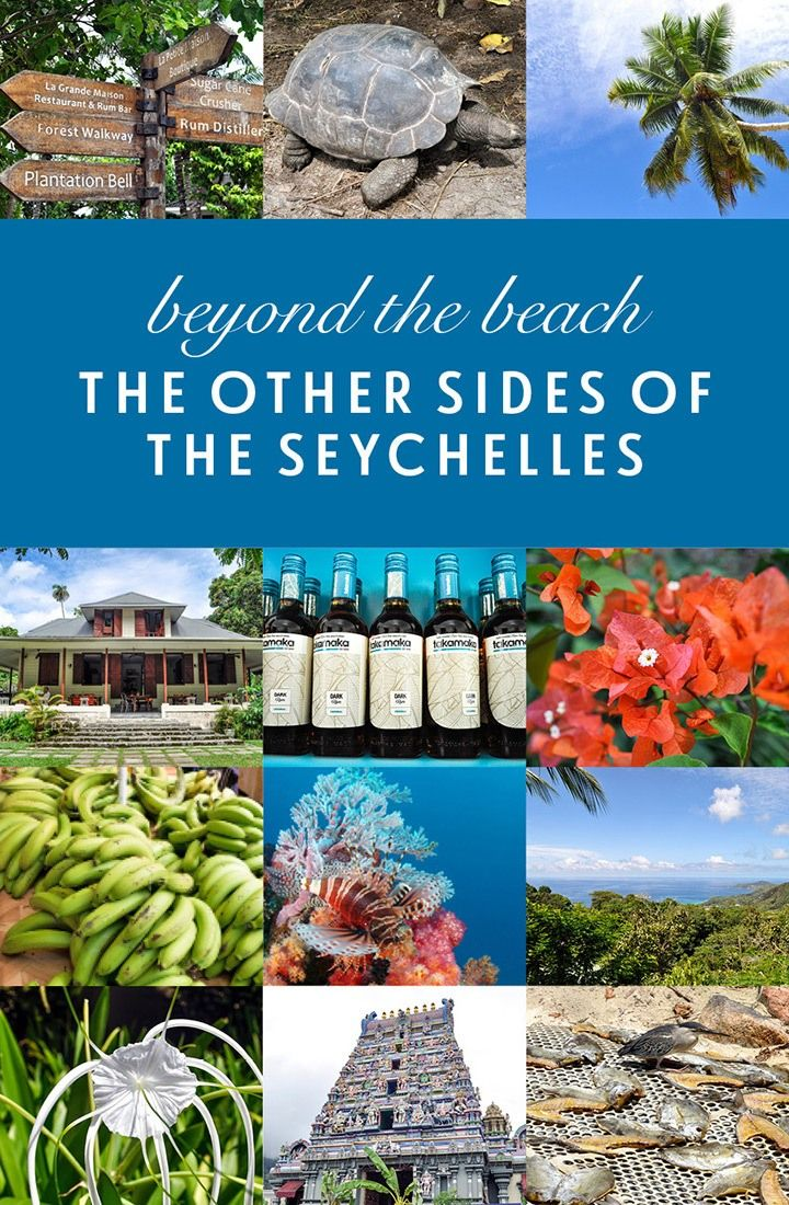 Beyond the beach: Uncovering the other sides of the Seychelles