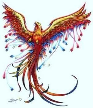 Colorful Phoenix with stars