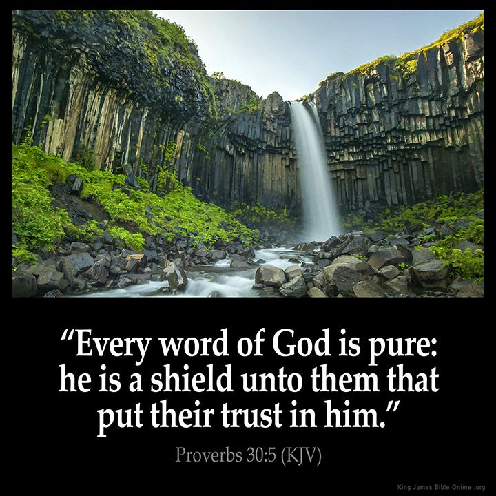 Proverbs 30:5  Every word of God is pure: he is a shield unto them that put…