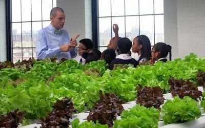 Δάσκαλος μετέτρεψε την τάξη του σε σχολικό κήπο http://ift.tt/2sGmpsm