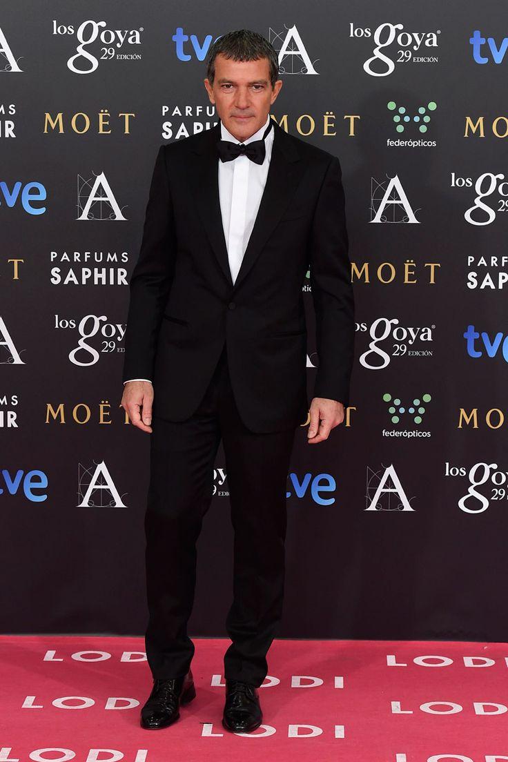 Antonio Banderas in Ermenegildo Zegna tuxedo - Premios Goya 2015 #suits
