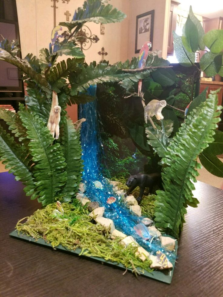 Black Panther Diorama Project (Rainforest Habitat)