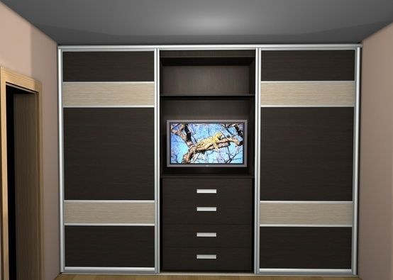 Дизайн шкафа-купе с нишей (фото 3)