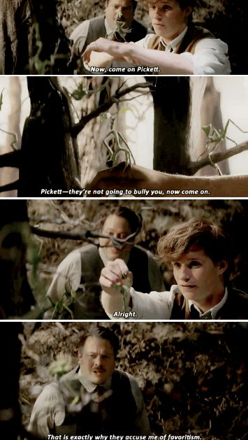 """Fantastic Beasts and Where to Find Them  - """"Everything about Pickett the Bowtruckle is wonderful and I am completely biased. He is probably my favorite. He is neurotic, he is slightly insecure, and he gets picked on by the other Bowtruckles. Newt has a very soft spot in his heart for him, hence he always carries him around in his top pocket and makes continuous excuses for him."""" - Eddie Redmayne"""