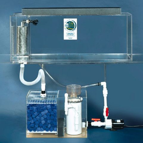 Clear-For-Life Deluxe All-In-One Fresh or Saltwater Acrylic Aquarium - Rectangular