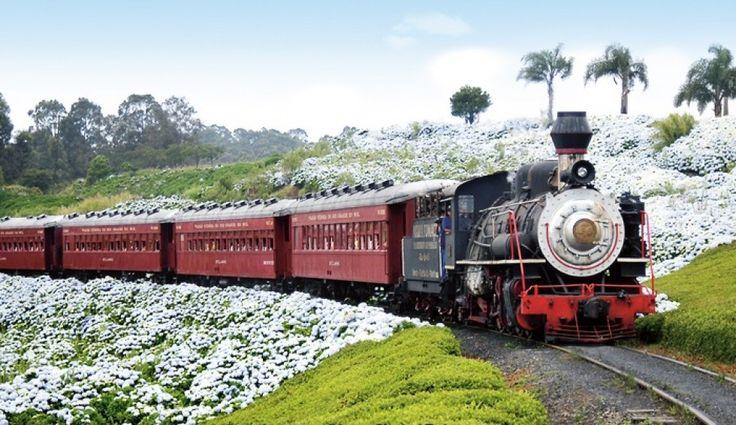 Serra Gaúcha: a charmosa e rica região de Caxias do Sul e Bento Gonçalves, a…