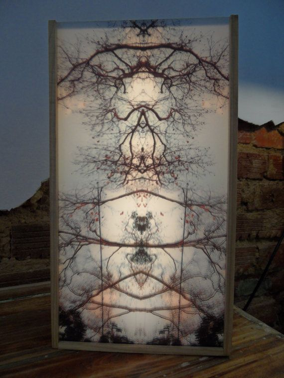 Unique Nature Art Light Box Mix Media Art Photography by CasaTITA