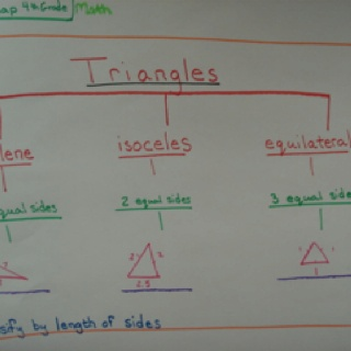 41 best classroom thinking maps images on pinterest teaching triangles tree map ccuart Choice Image