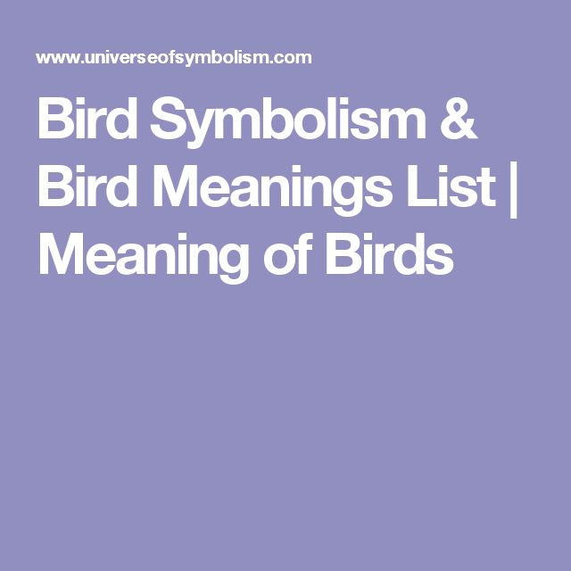 Bird Symbolism & Bird Meanings List | Meaning of Birds