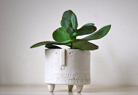 These little tripod pots are perfect to add a small plant or succulent to. The pot is hand built from slabs of stoneware clay and has a lovely matt white glaze. It is unique and has been built and decorated by hand. Height - 7.5cm Width - 8.5cm The bottom has been hand signed by me. The sale is for one pot only and does not include the plant due to posting.