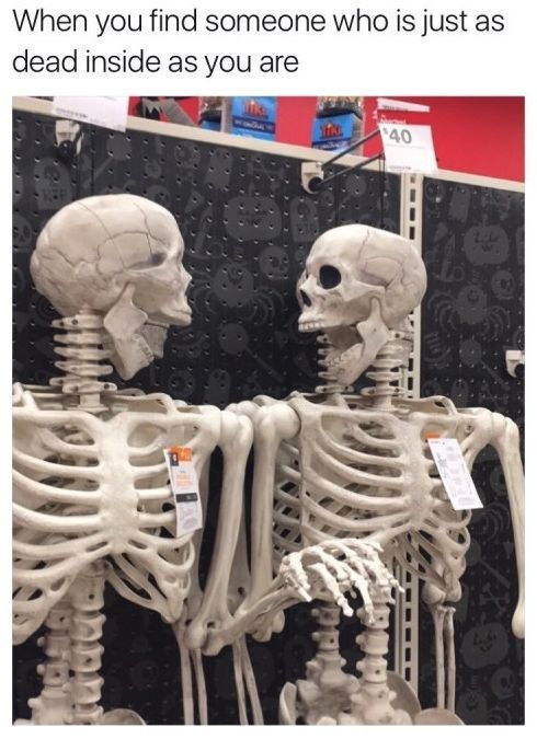 When you find someone who is just as dead inside as you are. Funny meme. Share with your best friends. noruleshere.com🔺---------------------- #cute #family #stylish #love #quotes #pretty #memes #ootd #halloween #christmas #ideas #fashion #style #autumn #beauty #travel #holiday #photography #hair #winter #ink #art #happy #cool #funny #lifestyle #home #ad #beautiful #food #clothing  #makeup #dresses #best #instagood #instagram #photo #shopping