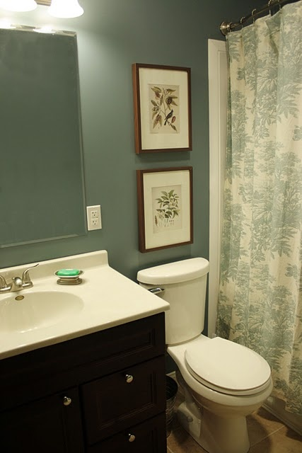 Decorating A Small Bathroom With No Window 7 best glass top shadow box coffee table images on pinterest