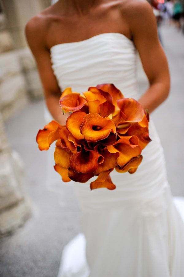 Cala Lilies for the bride in rich autumnal shades for the autumn wedding theme