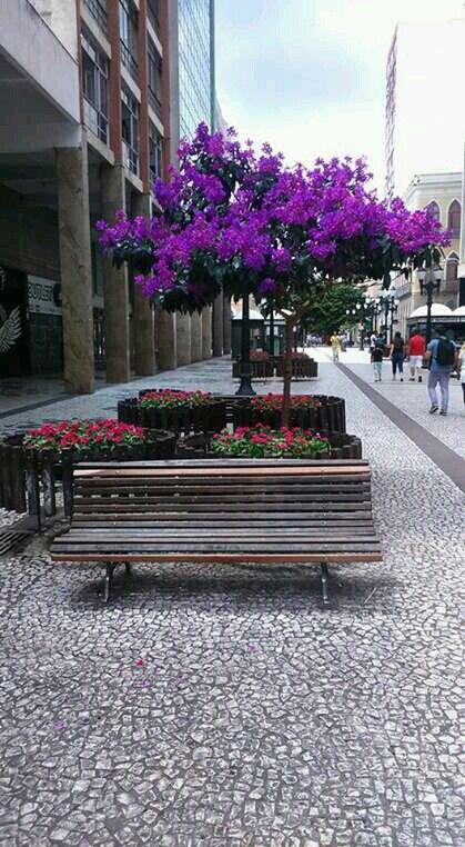 Rua das Flores em Curitiba,  PR.