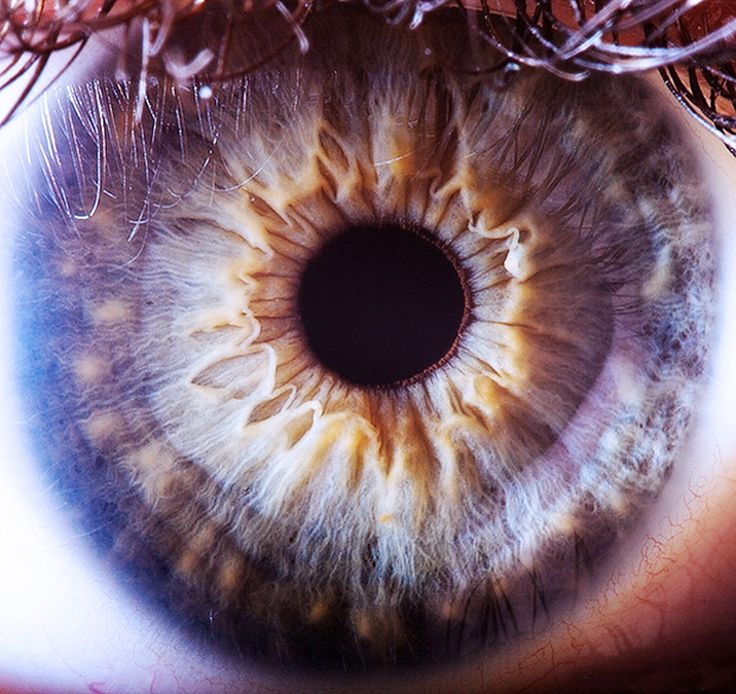 the human eye..a complex marvel of creation..looks like it's own universe