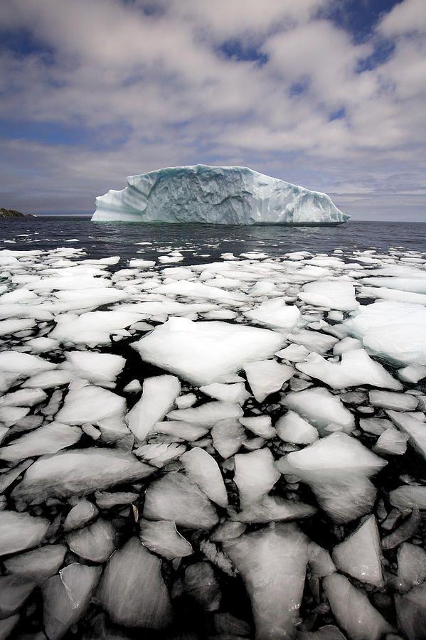 Floating Ice Shattered from Iceberg - Quirpon Island, Newfoundland