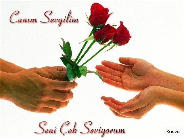 SANTA ROZA'DA SEVGİLİLER GÜNÜ