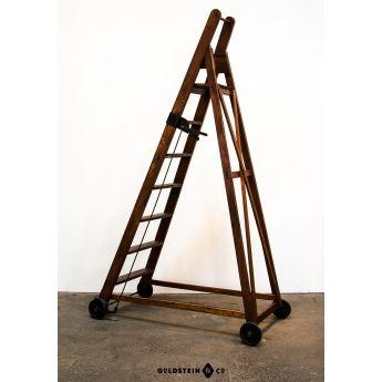 Bibliotheksleiter/library ladder