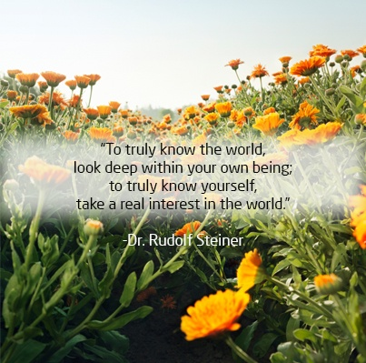 "To truly know the world, look deep within your own being; to truly know yourself, take a real interest in the world"" - Dr Rudolf Steiner #quote #quotestoliveby"
