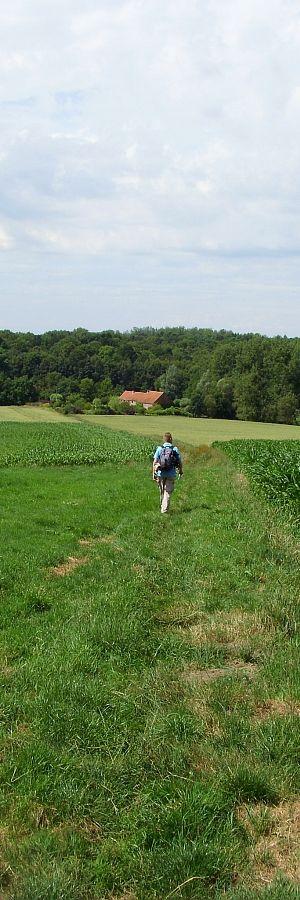 Tip voor avontuurlijke wandelaars: geen platgetreden paden of teleurstellende tochten op deze website, maar wel duidelijke, rustige en originele wandelingen in heel België.