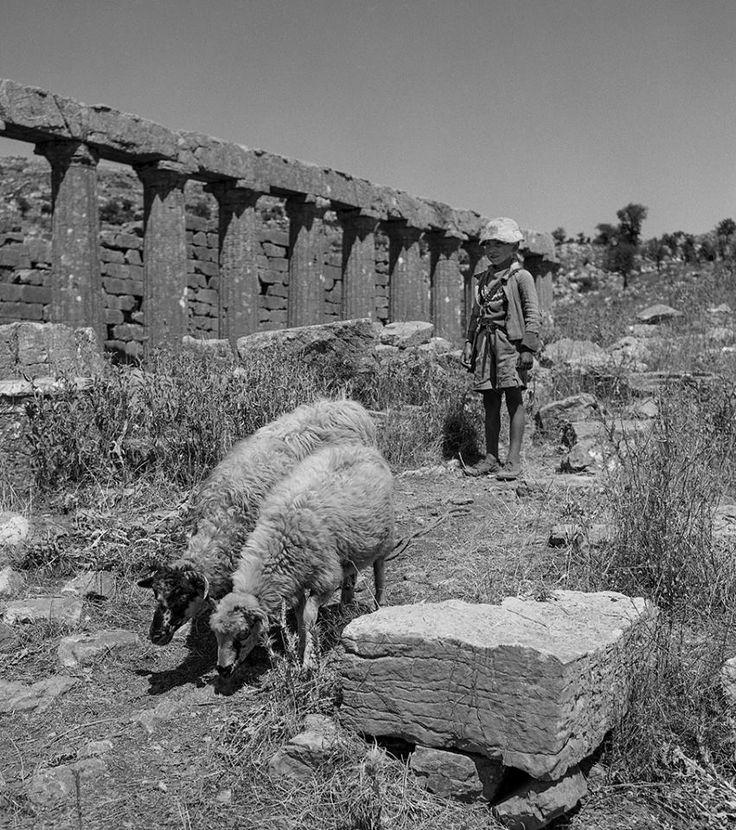 Ο ναός του Επικουρίου Απόλλωνα στις Βάσσες της Φιγαλείας (Πελοπόννησος) το 1963... Φωτογράφος James Austin.