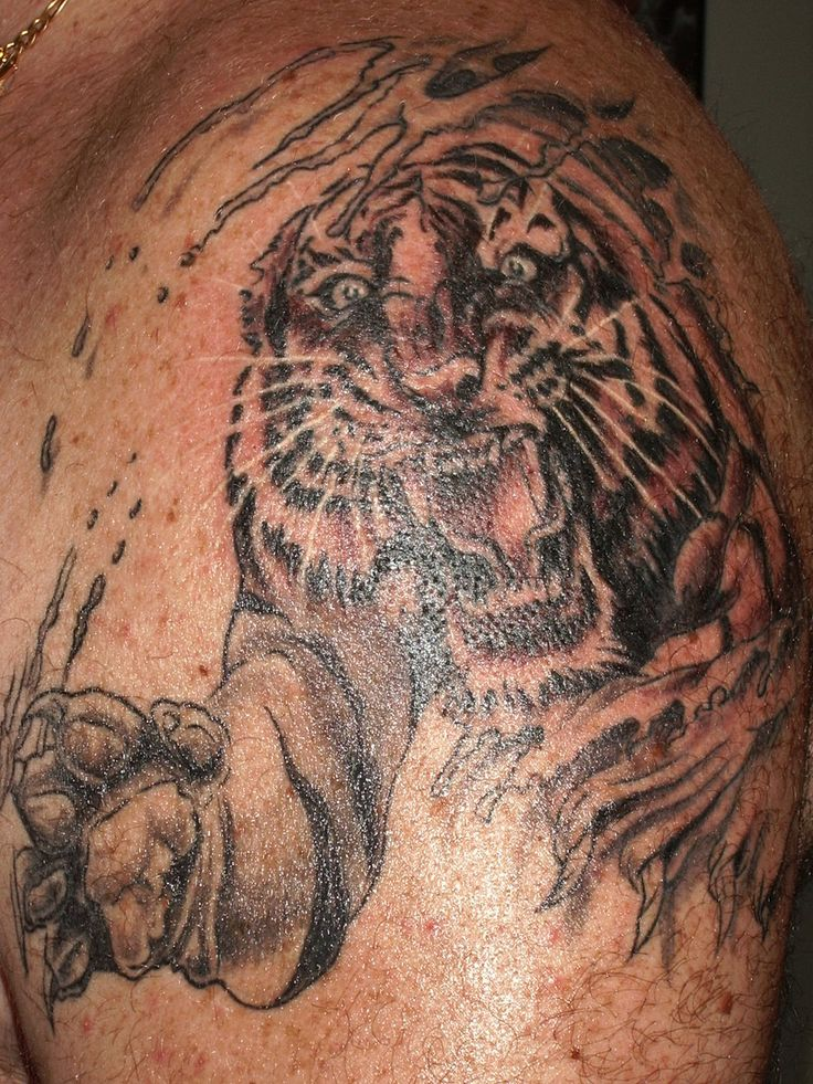 33 best tiger claw tattoos images on pinterest claw tattoo tiger claw and tribal tattoos. Black Bedroom Furniture Sets. Home Design Ideas